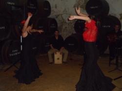 Show de Flamenco